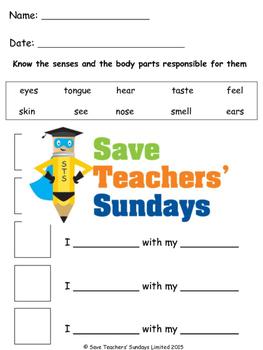5 senses / Five senses lesson plan and worksheets