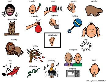 5 senses- Hearing Sense, What does it sound like?