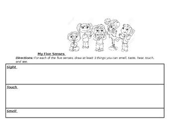 5 senses Kindergarten