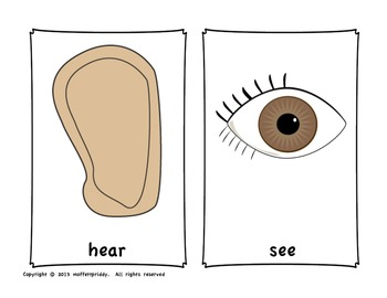 5 senses Write Around the Room FREE! (Please rate :)