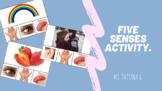 5 Senses Activity.