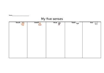 5 senses graphic organiser