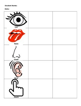 5 senses graphic organizer