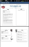 5 senses lab worksheet