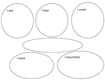 5 senses semantic map
