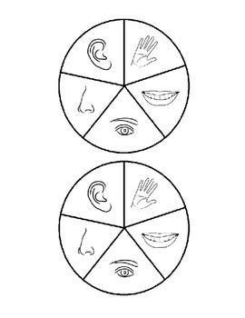 5 senses spinner game (French)