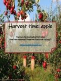 5 senses with apple theme