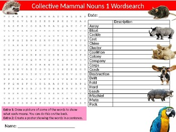 5 x Group Collective Nouns for Animals Wordsearch Sheet Activity English