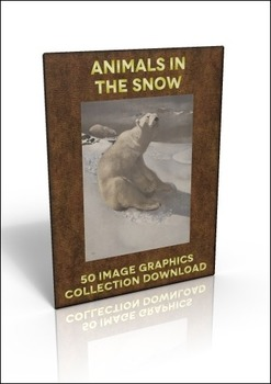 50 Animal in the Snow illustrations - great for Christmas fundraisers!