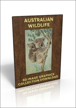 50 Australian Wildlife illustrations to use for anything y