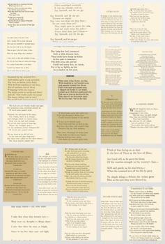 50 Bereavement Poems to use for absolutely anything!