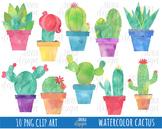 50% CACTUS WATERCOLOR clipart, botanical clipart, cactuse, plants