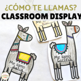 Llama Theme Bulletin Board for Back to School