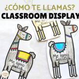 Llama Theme Bulletin Board for Back to School