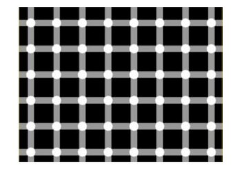 50 Favorite Optical Illusions