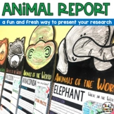 Animal Report Pennant Banners