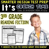 Reading Test Prep for 3rd Grade READING FICTION TEST PREP