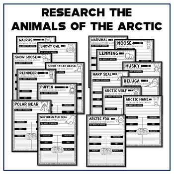 50% OFF 1ST 48 Arctic Animal Report Research Project Organizers