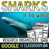Sharks Report: Research Project Organizers GOOGLE CLASSROOM