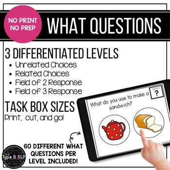 "No Print No Prep WH Questions: ""What"" Set"