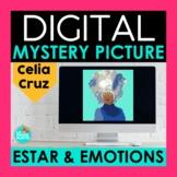ESTAR and Emotions Digital Mystery Picture   Celia Cruz Pixel Art