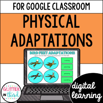 Physical adaptations & camouflage for Google Classroom DIGITAL