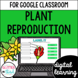 Plant reproduction for Google Classroom Distance Learning