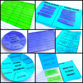 Singular and plural nouns Interactive Notebook
