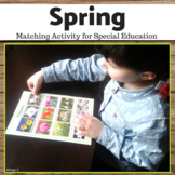 Spring Activity - Autism Matching File Folders