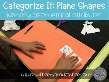 Categorize It: Plane Shapes & Their Attributes