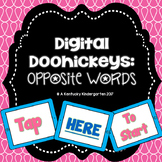 Distance Learning: Opposite Words