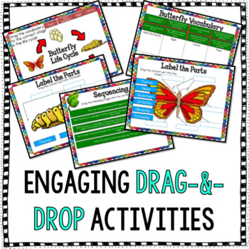 Butterfly Life Cycle for Google Drive & Google Classroom