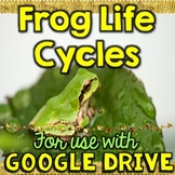 Frog Life Cycle for Google Drive & Google Classroom