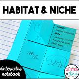 Habitat and niche Interactive Notebook