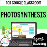 Google Classroom Distance Learning Photosynthesis
