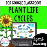 Plant life cycle for Google Classroom DIGITAL