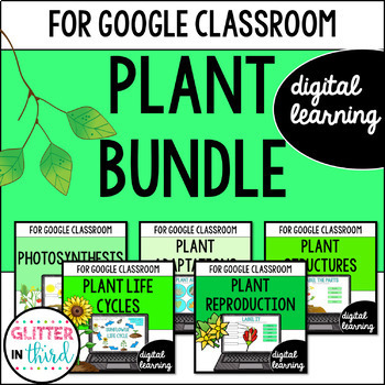Plants for Google Drive & Google Classroom