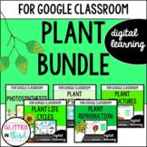Plants for Google Classroom DIGITAL