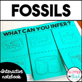 Fossils Interactive Notebook SOL 3.4