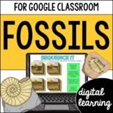 Fossils for Google Classroom DIGITAL SOL 3.4