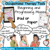 MAZES Occupational Therapy Tools for Perception~Executive