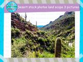 Desert Landscape Stock Photographs
