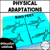 Physical adaptations camouflage & mimicry Interactive Notebook