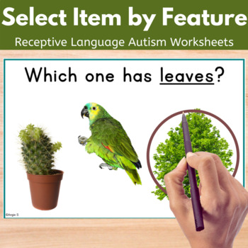 Receptive Language Worksheets- Select Item by Feature