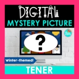 TENER Spanish Digital Mystery Picture   Winter-themed