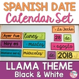 Spanish Date Calendar Pieces: Black & White Llama Theme