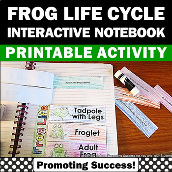 Frog Life Cycle Interactive Science Notebook Spring or Sum