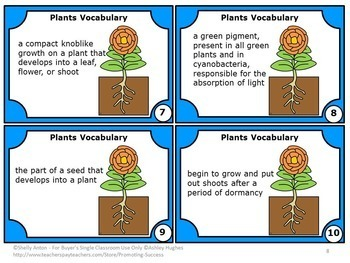 Plants Unit BUNDLE Plant Life Cycle Parts of a Flower Interactive Notebooks