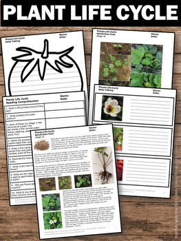 plant life cycle unit science reading comprehension nonfiction passages. Black Bedroom Furniture Sets. Home Design Ideas