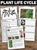 Plant Life Cycle Reading Comprehension Nonfiction Passages